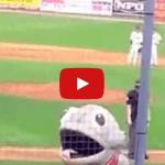 Fisch-Maskottchen frisst Baseballspieler
