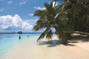 Barfuss auf den Malediven