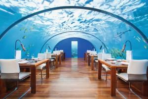 Abgetaucht auf den Malediven