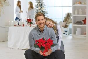 Home, Sweet Christmas Home: weihnachtliche Vorfreude mit dem Weihnachtsstern