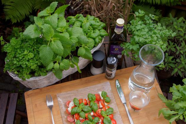 Keine Küche ohne Kräuter – Multitalente für den Balkon