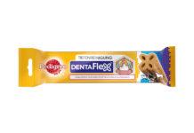 Auch Hunde müssen täglich Zähne putzen