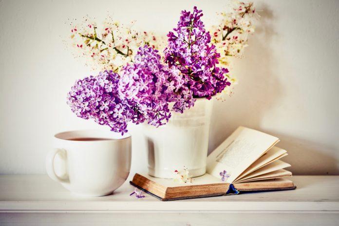 Lesestoff für den Frühling: Diese Bücher solltest du nicht verpassen