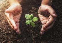 Umweltschutz im Alltag: 7 einfache, aber wirkungsvolle Tipps