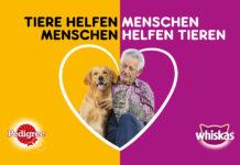 Tiere helfen Menschen - Menschen helfen Tieren