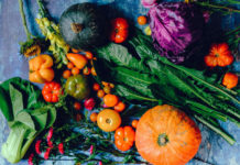 Clean Eating, Paleo und Co.: Die Trend-Diäten der Stars im Check