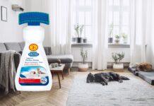Fleckenfreie Teppiche – neue Gemütlichkeit