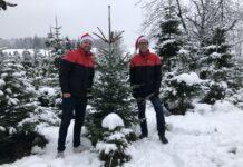 DPD Schweiz hat 500 Weihnachtsbäume verlost