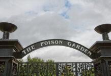 """Der """"Poison Garden"""" von Alnwick liegt in Northumberland im Nordosten Englands."""