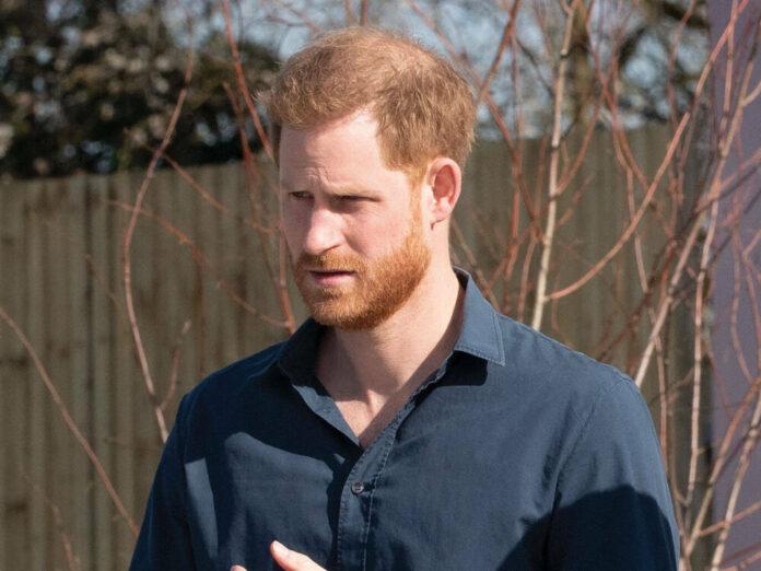 Prinz Harry im vergangenen Jahr