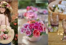 Dekorationsideen mit Geranienblüten