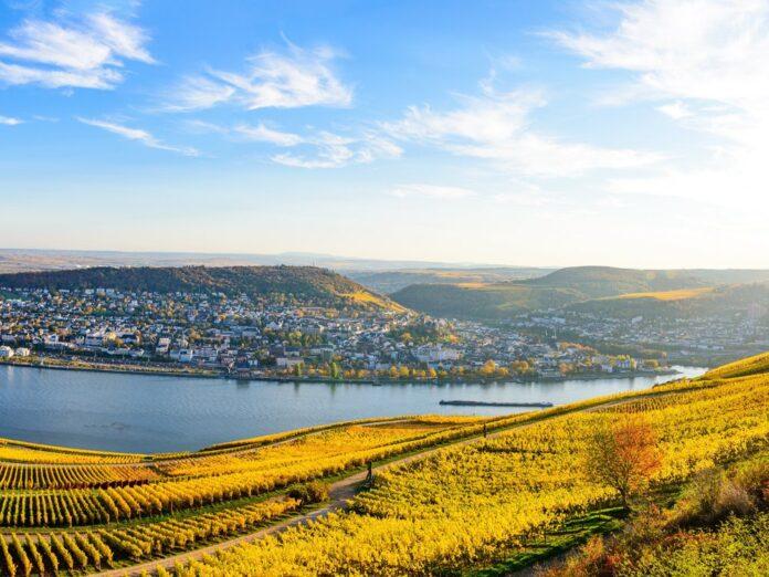 Das Niederwalddenkmal bietet eine traumhafte Aussicht auf den Rhein.