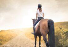 Für Pferdefans ist ein Urlaub auf dem Bauernhof genau das Richtige.