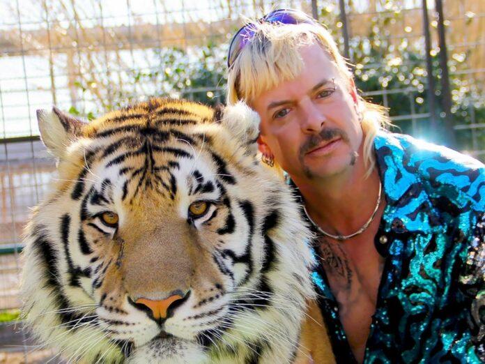 Joe Exotic und seine Großkatze.