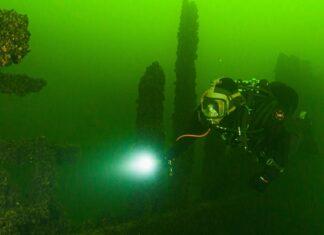 Im grünen Wasser der Ostsee warten versunkene Schiffe auf Taucher.