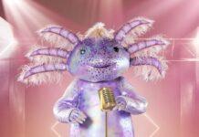 """Das Axolotl wird neben der Chili oder dem Mops auf der """"Masked Singer""""-Bühne stehen."""